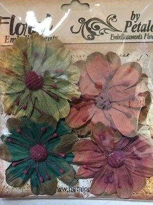 Petaloo - Darjeeling -  Wildflower Mix - 4pcs (CLEARANCE)