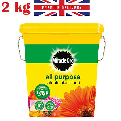 Miracle Gro All Purpose Water Soluble Plant Food Tub 2 KG Grows Bigger Plants