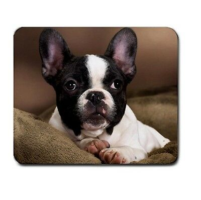 FRENCH BULLDOG Puppy CUTE PUPPIES MOUSEPAD MOUSE PAD 94727181