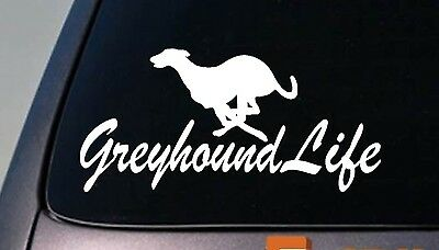 Greyhound life sticker decal dog track rescue dogracing shelter muzzle whippet