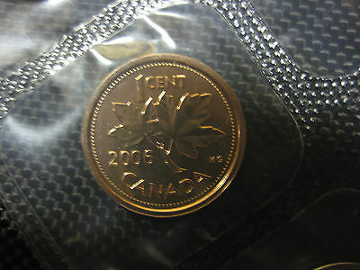 2006 P Canadian Prooflike Penny ($0.01) Magnetic