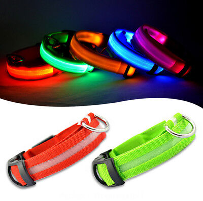 Collar ajustable nilon para Perro con LED flash alta visibilidad paseo seguro