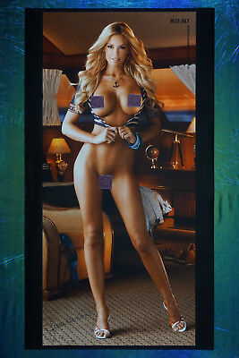 2011 Playboy Magazine Playmate Jessa Hinton Collector Poster 20X36 OOP NEW  11JH