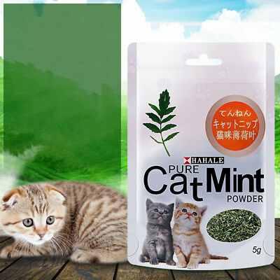 AU_ 5g Effective Cat Mint Powder Natural Catnip Pet Mouth Cleaning Aid Candy