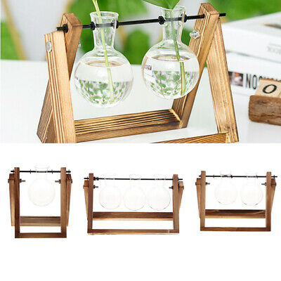 Desktop Glass Planter Bulb Vase Solid Wood Stand Hydroponic Plant Container