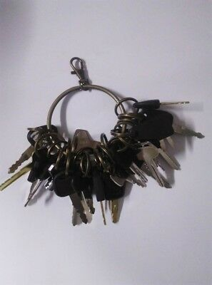 24 PC KEYS FOR construction machinery 5p8500 k250 s450 787 301 777 H800 s450