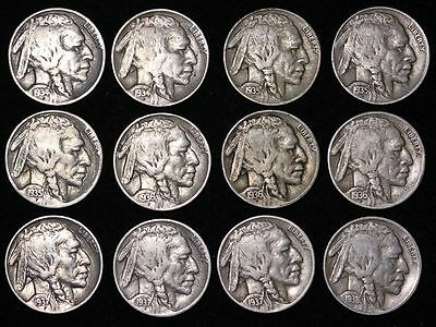 ALL 12 NICE Coins 1934 - 1938 P D S BUFFALO NICKELS 5c! Starter Set! FREE P/H