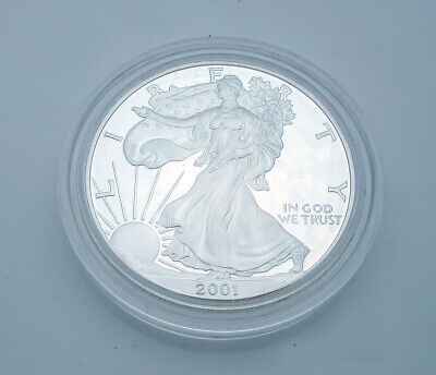 2001-W American Eagle Walking Liberty $1 One Ounce Proof Silver Coin G5