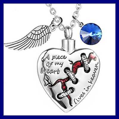 Heart Cremation Jewelry Necklace For Ash Memorial Pendant W Angel Wing Mens