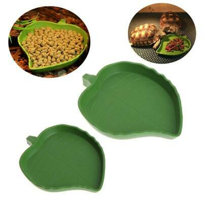 New Reptile Water Food Dish Bowl Plastic Meal Gecko Worm Feeder Leaf Shape S/L