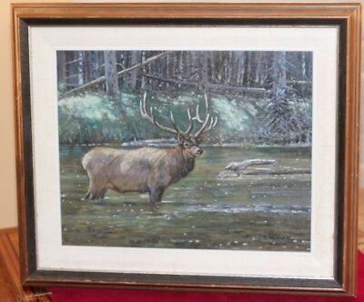 Canadian Wildlife Pastel PAINTING by Listed Canadian Artist FRED CAMERON