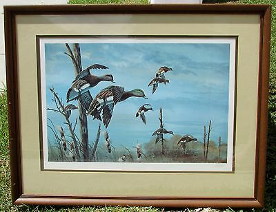1983 The American Wigeon Print Bob Binks  Ltd Ed, #'d, Signed  - DUCKS UNLIMITED