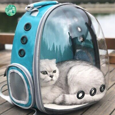 Space Capsule Ventilated Cat Outdoor Bag Portable Transparent Pet Backpack