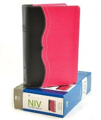 NIV ZONDERVAN STUDY Bible : Built on the Truth of Scripture