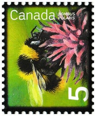 Canada 2236 Beneficial Insects Northern Bumblebee 5c single (1 stamp) MNH 2007