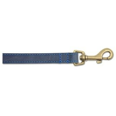 Ancol Timberwolf Leather Dog Lead, 60 Cm, Blue - Lead Collar Sable Brown