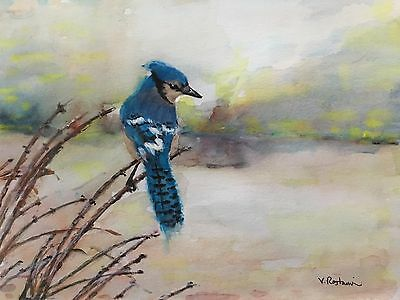 "A-693 Original Watercolor Painting ""Blue Jay"" Gift Idea Birds landscape aceo fun"