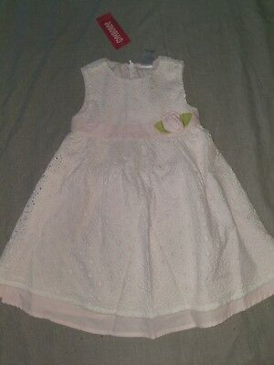 35fa25240a25 New Gymboree Special Occasion Parisian Rose Dress White Eyelet Easter 18-24