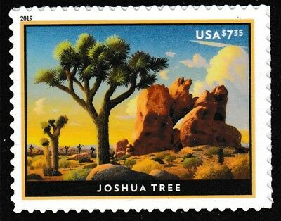 US 5347 Priority Mail Joshua Tree $7.35 single (1 stamp) MNH 2019