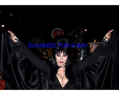 ELVIRA CASSANDRA PETERSON el056 8X10 PHOTO MISTRESS OF THE DARK SEXY NEW