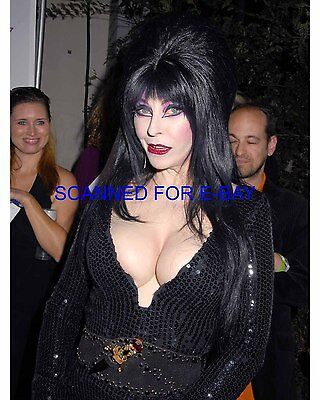 ELVIRA CASSANDRA PETERSON el019 8X10 PHOTO MISTRESS OF THE DARK SEXY NEW