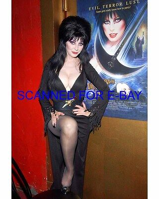 ELVIRA CASSANDRA PETERSON el002 8X10 PHOTO MISTRESS OF THE DARK SEXY NEW