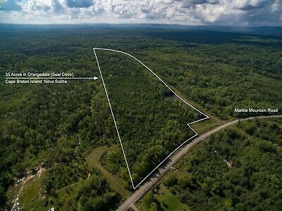 35 Acres for Sale in Orangedale, Cape Breton, Nova Scotia - near Bras d'Or Lake