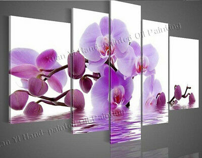 5Pcs Butterfly Orchid Flower Handpainted Oil Painting Cavas Wall Art Home Decor
