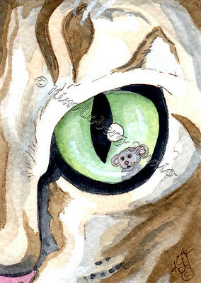 Tabby Cat Eye Mouse Kitten feline ACEO EBSQ Kim Loberg animal Mini Art Pet kitty