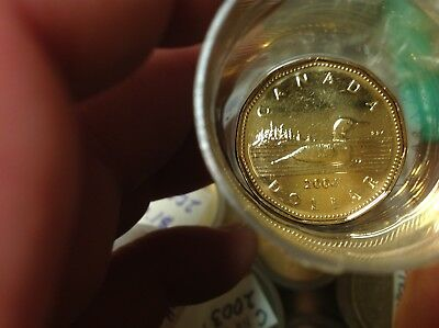 Brilliant Uncirculated 2004 Canada 1 Dollar From Mint Roll, Loonie