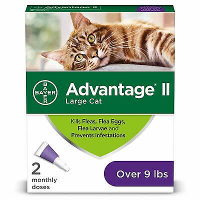 Bayer Advantage II Large Flea Egg Larvae medicine Prevention Infestation for Cat