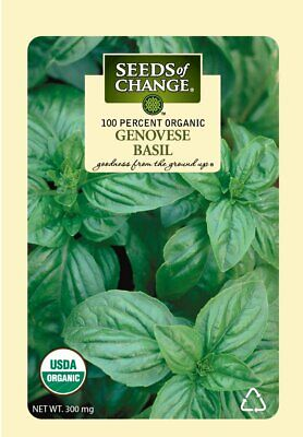 Seeds of Change Organic Genovese Basil Slow Bolting Herb Container Garden Plant