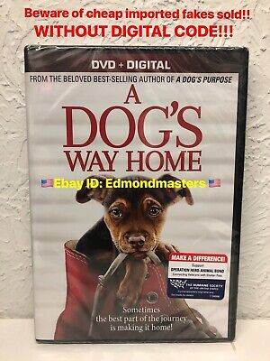 A Dog's Way Home 2019 DVD + DIGITAL!! Beware of Cheap Fakes W/O Digital Insert!