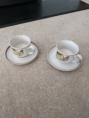 Denby Troubadour Tea Cup and Saucer set of two