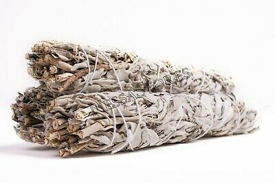 "California White Sage Smudge Incense 9"" Bundle (3 pcs) #JC-139"