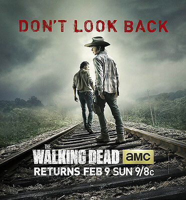 """Walking Dead Large Window Cling PROMO Poster """"Dont' Look Back"""" Rick / Carl 2014"""