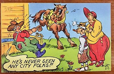 Vintage Linen Postcard Humor Horse bucking farmer city folks corn pipe
