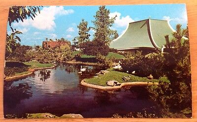 Sea World, Mission Bay, San Diego CA vintage glossy chrome postcard - 1960's?