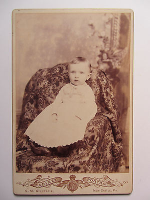 ID'd - CLARK PATTERSON - New Castle PA - Old Cabinet Card Baby Photo circa 1895