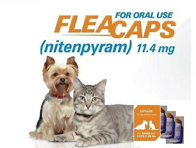 16 CAT Same Active Ing. As Capstar  Flea Treatment GET 2 ORDERS FREE!