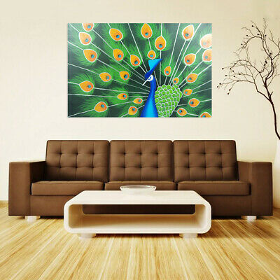 Abstract Hand Painted Oil Painting Canvas - Peacock - Modern Home Decor - Framed