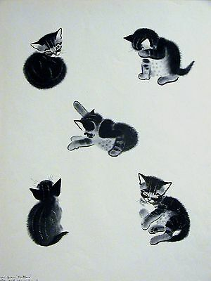 Clare Turlay Newberry 5 CUTE KITTEN POSES #2a - c1940 Large Art Print Matted