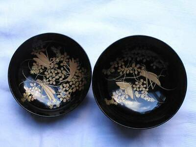 Fantastic antique Japanese lidded lacquer bowl with insects 1900-15 #3867