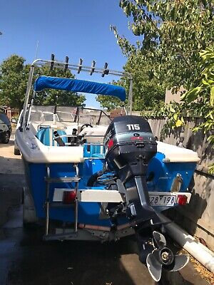 115 Evinrude 4.8 Length Outboard Motor and Trailer - URGENT SALE