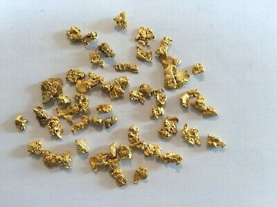 19.74 grams  Gold   Nuggets