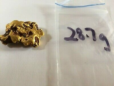 28.7 grams  Gold   Nugget