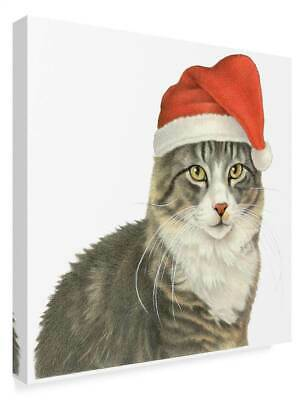 Christmas Kitty' Gallery Wrapped Canvas Art [ID 3769115]