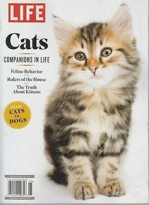 LIFE Cats Companions In Life Time Inc. Specials 2019