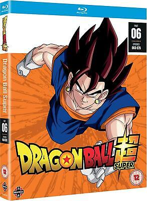 Dragon Ball Super Part 6 (Episodes 66-78) (2 Dvd) [Edizione in lingua in...