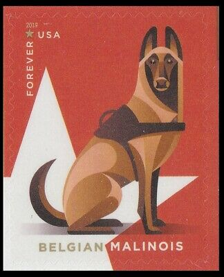 US 5407 Military Working Dogs Belgian Malinois forever single MNH 2019